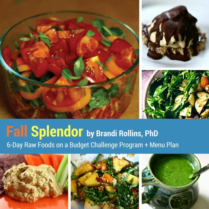 fall-splendor-cover-700px-1